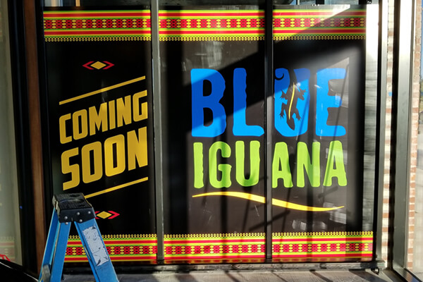 Restaurants Blue Iguana Window Graphics
